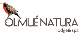 OLMUÉ NATURA Lodge & Spa